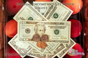 Dividend Income and Net Worth August 2015